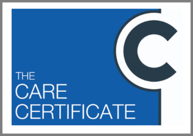 Care Certificate (Skills for Care)